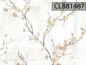 CL881467